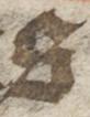 s2-file